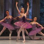 Moscow-Festival-Ballet-Swan-Lake2.jpg